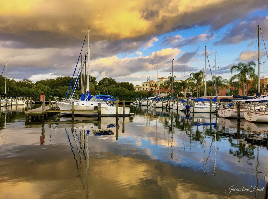 Safety Harbor Marina, FL